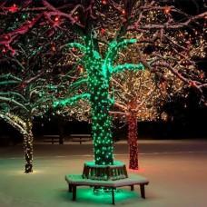 Florya Ağaç Işıklandırma