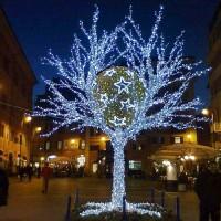 Free Luxury Ağaç Işıklandırma