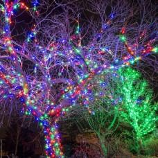 Pegasus Nero Ağaç Süsleme Işıkları