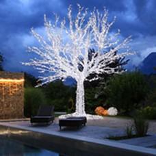 En İyi Ağaç Süsleme Işıkları